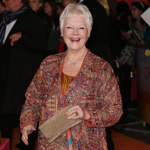 'The Second Best Exotic Marigold Hotel' film premiere